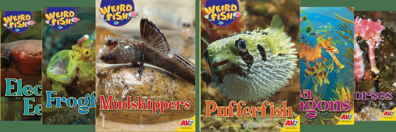 weird-fish-collection