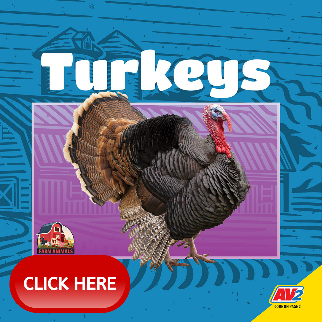 Thanksgiving-Title4-Turkeys-WithLink
